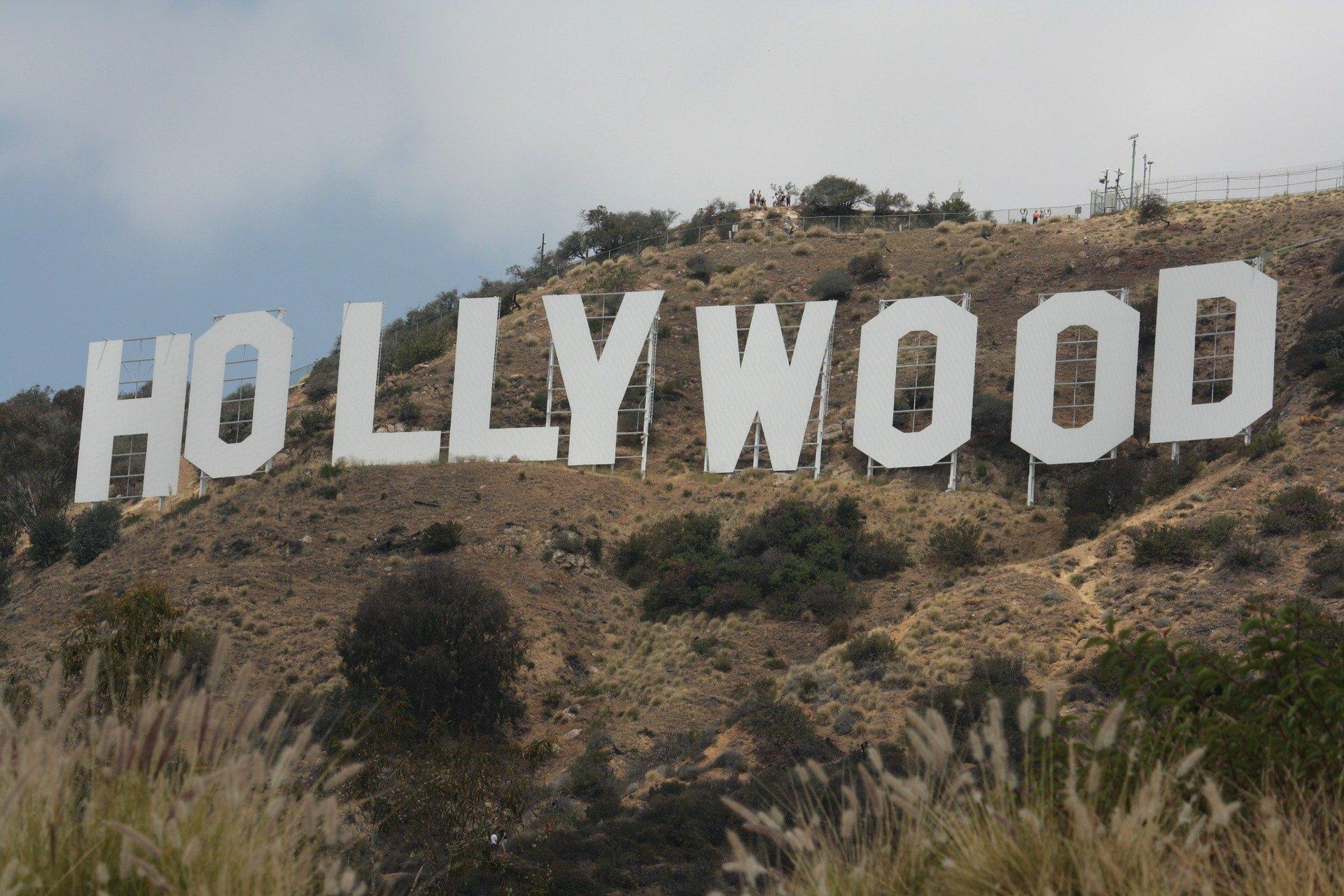 Vegane Promis gibt es nicht nur in in Hollywood